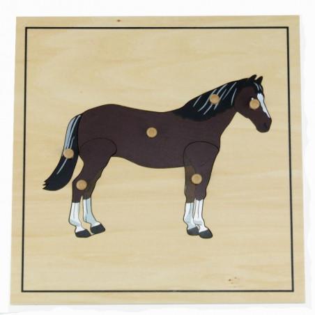 Puzzle du cheval avec squelette