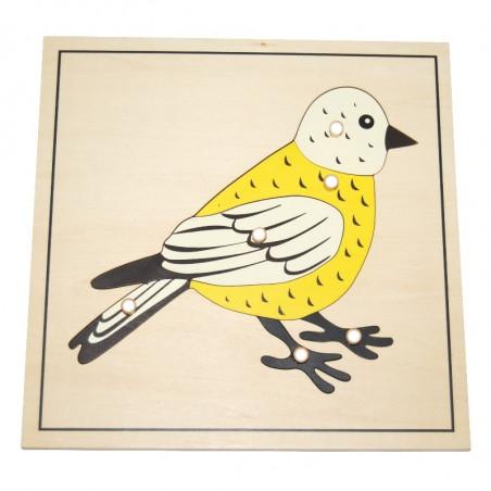 Puzzle de l'oiseau Montessori