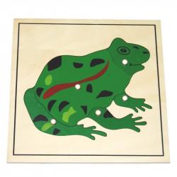 Puzzle de la grenouille Montessori