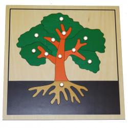 Puzzle de l'arbre Montessori