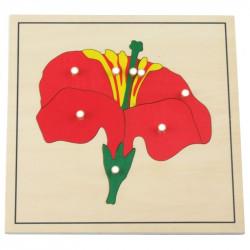 Puzzle de la fleur