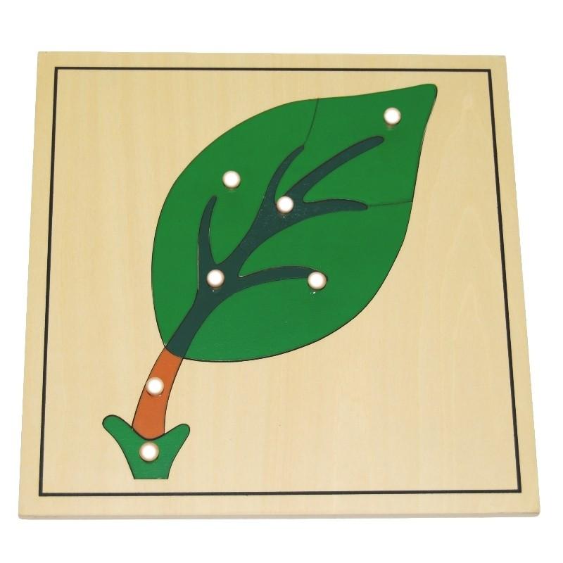 Puzzle de la feuille Montessori