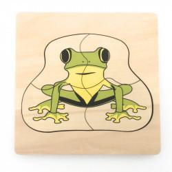 Puzzle cycle de vie de la grenouille 1
