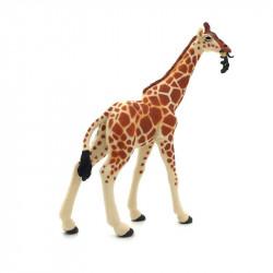 Animaux d'Afrique 2 - La girafe